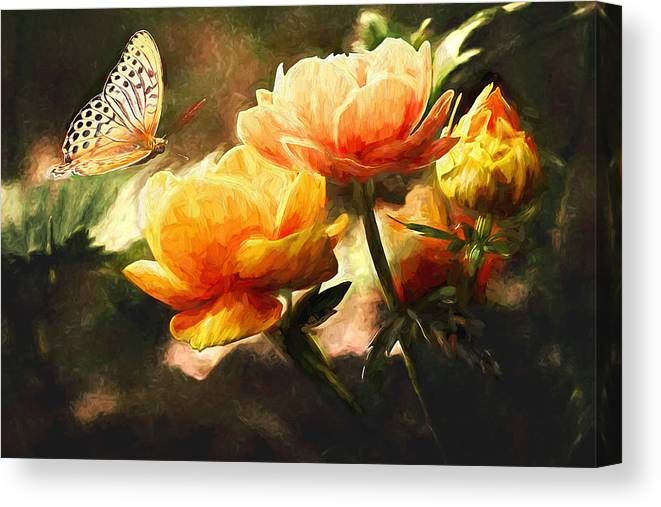 Butterfly Canvas Print featuring the painting The Butterfly by Sean Duffy