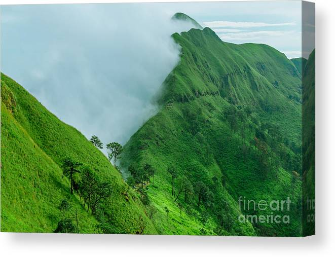 Aerial Canvas Print featuring the photograph Tropical Rainforest, Khao Chang Puek by Avigator Fortuner