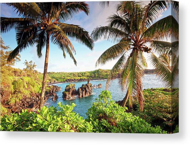 Scenics Canvas Print featuring the photograph Wainapanapa, Maui, Hawaii by M.m. Sweet