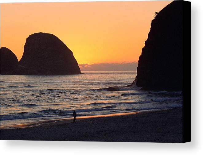 Landscape Canvas Print featuring the photograph Figure On Seastack by Lynard Stroud