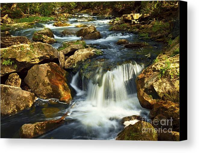 Waterfall Canvas Print featuring the photograph River Rapids by Elena Elisseeva