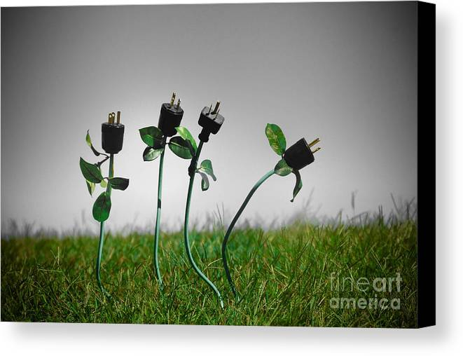 Alternative Energy Canvas Print featuring the photograph Growing Green Energy by Amy Cicconi