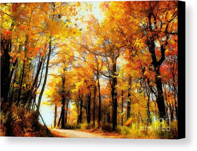 Autumn Leaves Canvas Print featuring the photograph A Golden Day by Lois Bryan