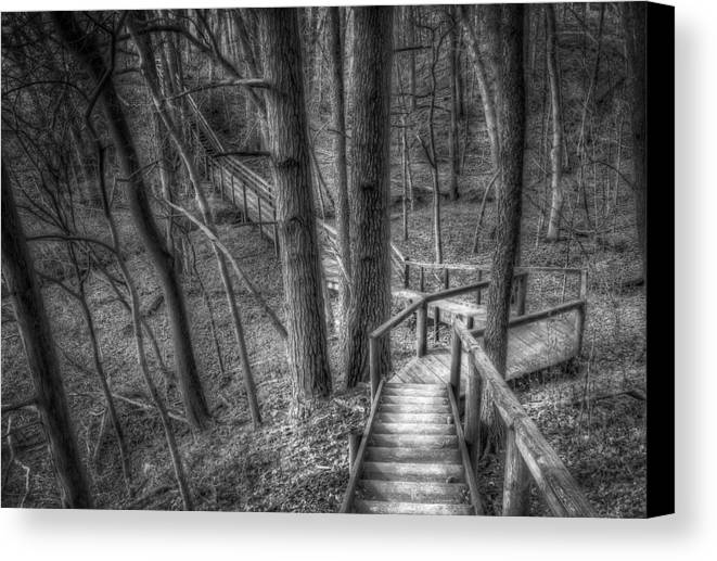 Trees Canvas Print featuring the photograph A Walk Through The Woods by Scott Norris