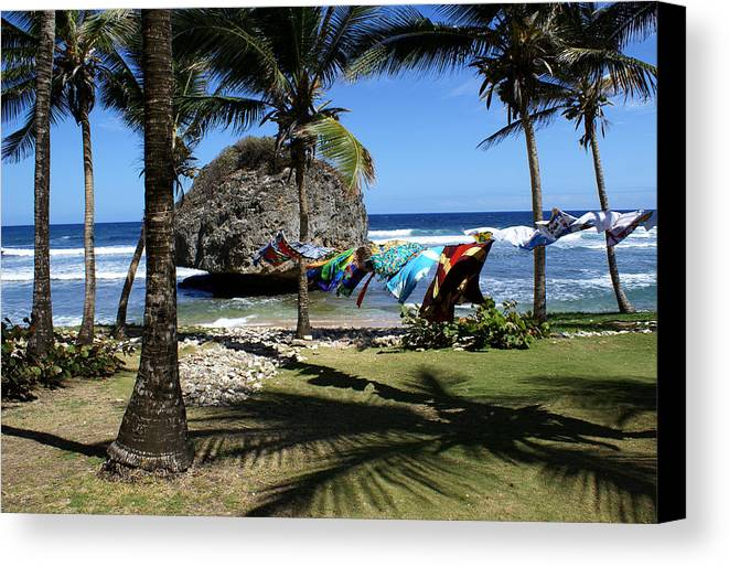 Landscape Canvas Print featuring the photograph Bathsheba Barbados by Roger Leege