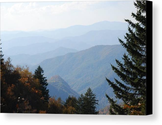 Blue Ridge Canvas Print featuring the photograph Blue Ridge In The Fall by Michael Gooch