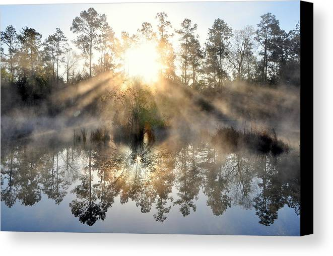 Fog Canvas Print featuring the photograph Brand New Day by Charlotte Schafer