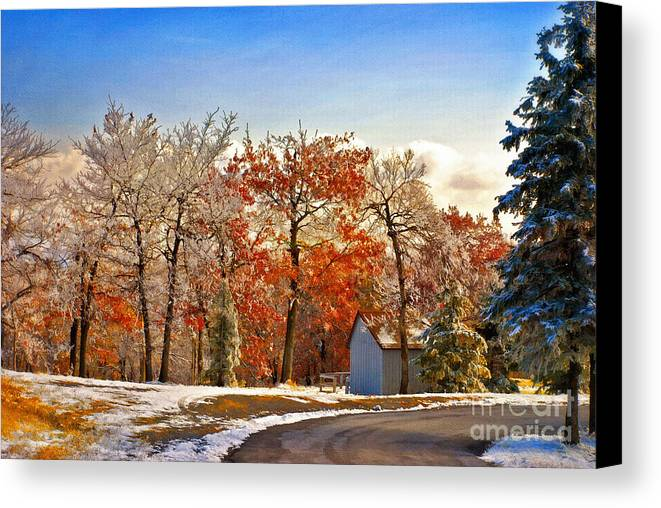 Landscape Canvas Print featuring the photograph Change Of Seasons by Lois Bryan