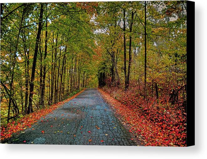 Autumn Canvas Print featuring the photograph Country Lane In Autumn by Mark Orr