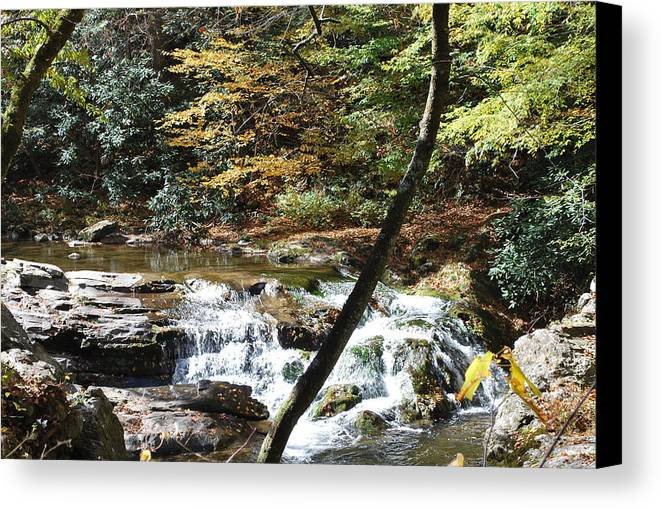 Cades Cove Canvas Print featuring the photograph Creek 8 by Michael Rushing