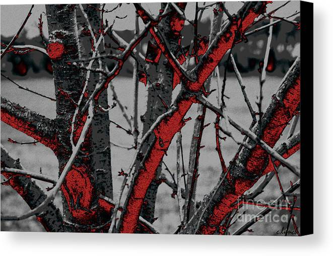 Dark Canvas Print featuring the digital art Dark Branches by Carol Lynch