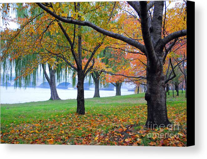 Fall Canvas Print featuring the photograph fall on the Potomac River by Jost Houk
