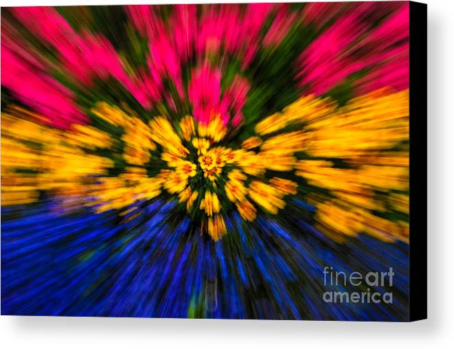 Floral Canvas Print featuring the photograph Floral Triple Zoom by Grace Grogan