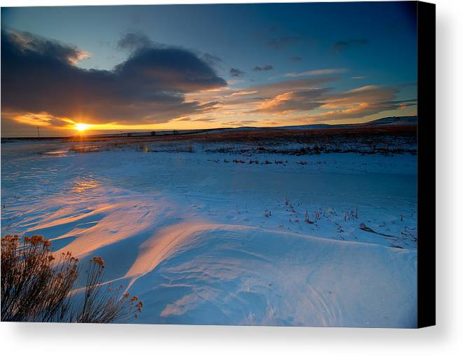 Colorado Canvas Print featuring the photograph Ft Collins Snow Sparkles by Preston Broadfoot