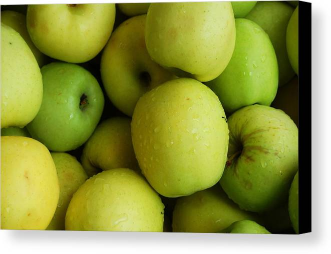 Green Apples Canvas Print featuring the photograph Green Apples by Mamie Gunning