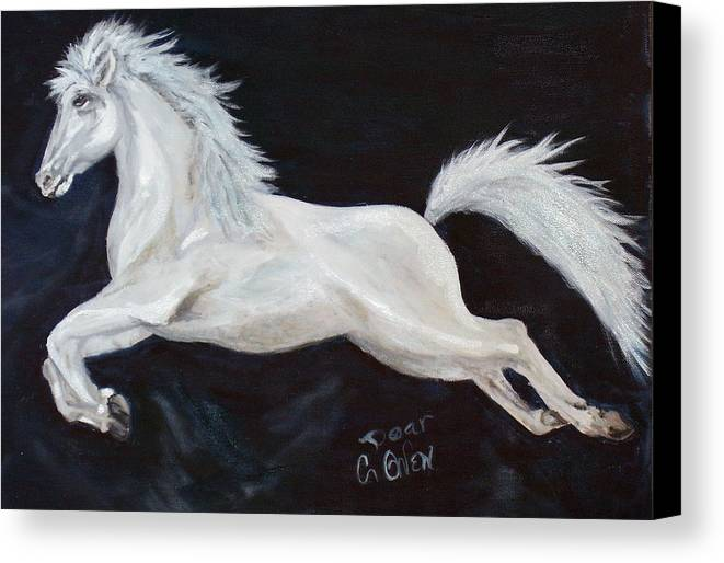 Horse Canvas Print featuring the painting Lipizzaner Capriole by Caroline Owen-Doar