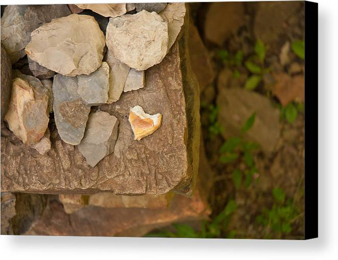 Hearts Canvas Print featuring the photograph Lonely Heart by Lena Wilhite