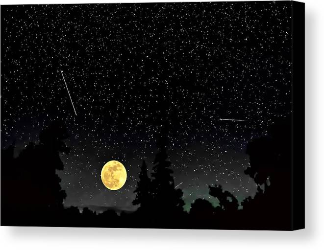 Galaxy Canvas Print featuring the photograph Night Moves by Steve Harrington