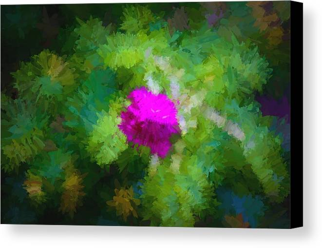 Maine Canvas Print featuring the photograph October Wild Rose by Frank Tozier