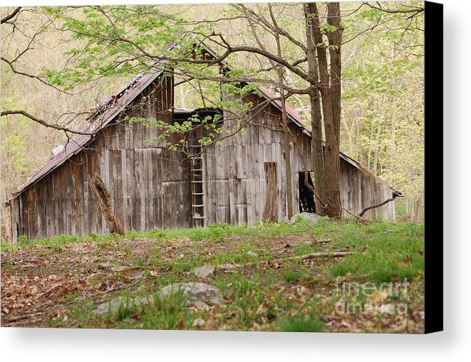 Pendleton County Canvas Print featuring the photograph Pendleton County Barn by Randy Bodkins