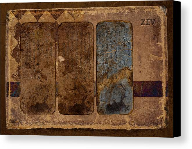 Postcard Canvas Print featuring the photograph Proof Xiv by Carol Leigh