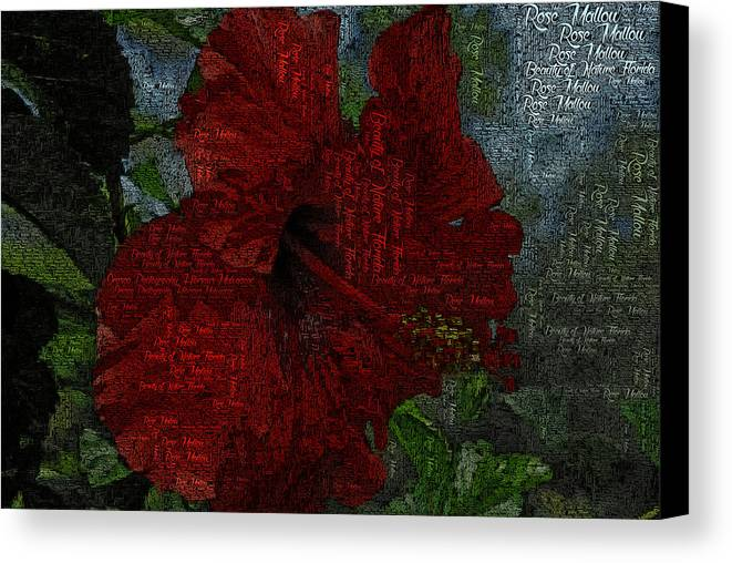 Hibiscus Canvas Print featuring the photograph Red Hibiscus by G Adam Orosco