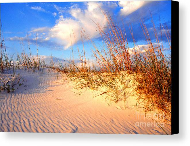 Beach Canvas Print featuring the photograph Sand Dune And Sea Oats At Sunset by Thomas R Fletcher
