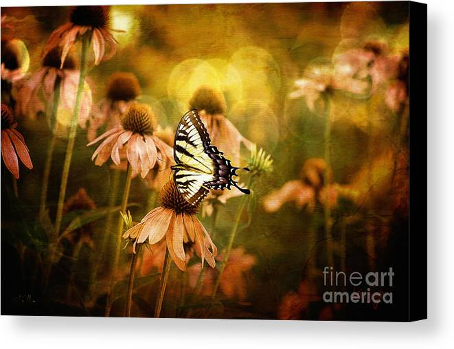 Floral Canvas Print featuring the photograph The Very Young At Heart by Lois Bryan