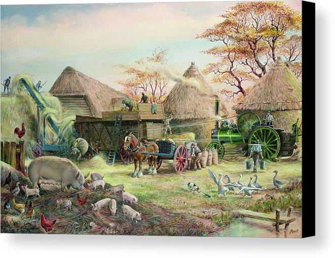 Steam; Thresher; Farmyard Scene; Farm; Yard; Haystack; Farmers; Labourers; Shire Horse; Thatched; Roof; Roofs; Harvest; Family Of Pigs; Pig; Piglets; Sow; Rural; Thatch; Farm Canvas Print featuring the painting Threshing In Kent by Dudley Pout