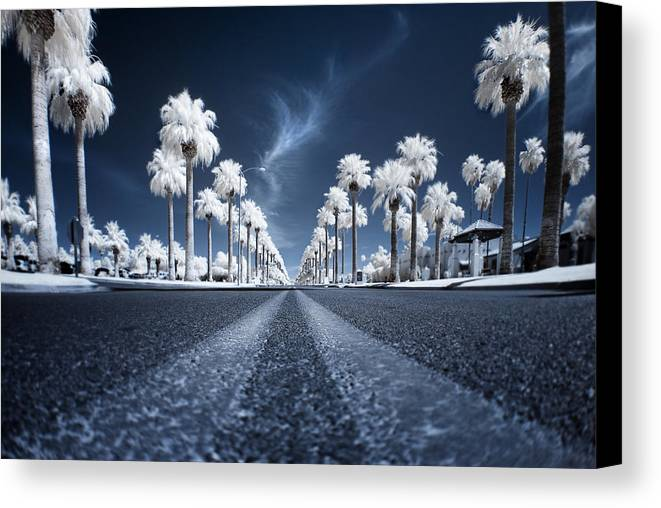Infrared Canvas Print featuring the photograph X by Sean Foster