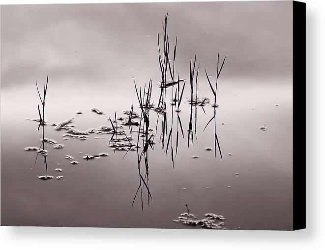 Water Canvas Print featuring the photograph Zen Waters by Lorenzo Cassina