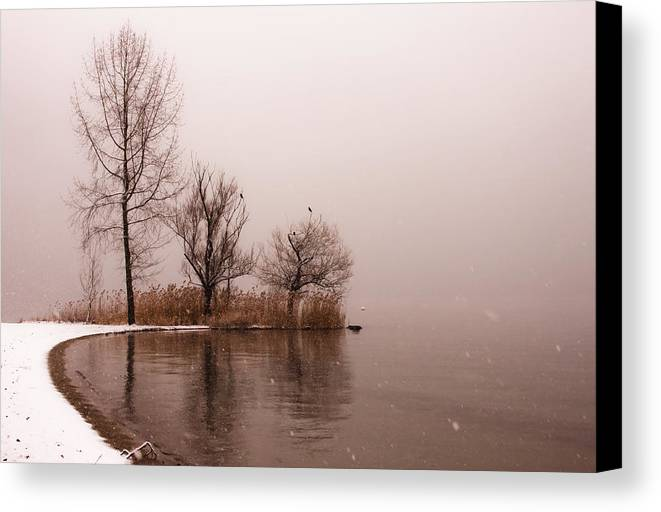 Travel Canvas Print featuring the photograph Wintertrees by Joana Kruse
