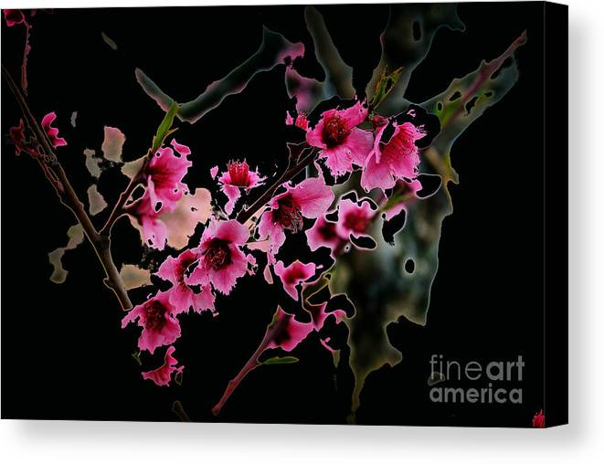 Landscape Canvas Print featuring the photograph Cherry Tree by Karl Voss