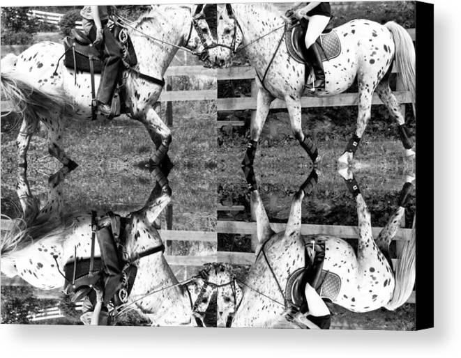 Equine Canvas Print featuring the digital art English And Western Collide by Betsy Knapp