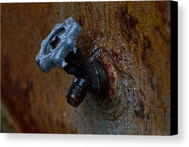 Faucet Canvas Print featuring the photograph Faucet by Wilma Birdwell