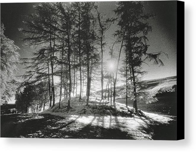 Halloween Canvas Print featuring the photograph Forelacka Burial Ground by Simon Marsden