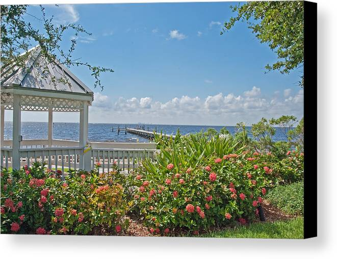 Sunshine Canvas Print featuring the photograph Little Harbor Tampa Bay by John Black
