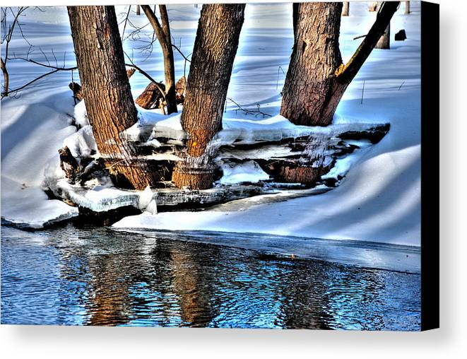 Waterloo Canvas Print featuring the photograph Nature's Icy Abstract No.2 by Janice Adomeit