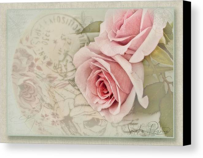 Pink Canvas Print featuring the photograph Posted by Sandra Rossouw