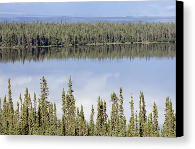 Lakes Canvas Print featuring the photograph Reflection In Willow Lake Near Copper by Rich Reid