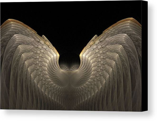 Fractals Canvas Print featuring the digital art Shells 24 by Michele Caporaso