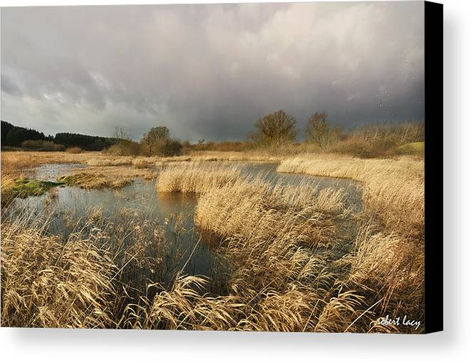 Swampland Canvas Print featuring the photograph Swampland by Robert Lacy