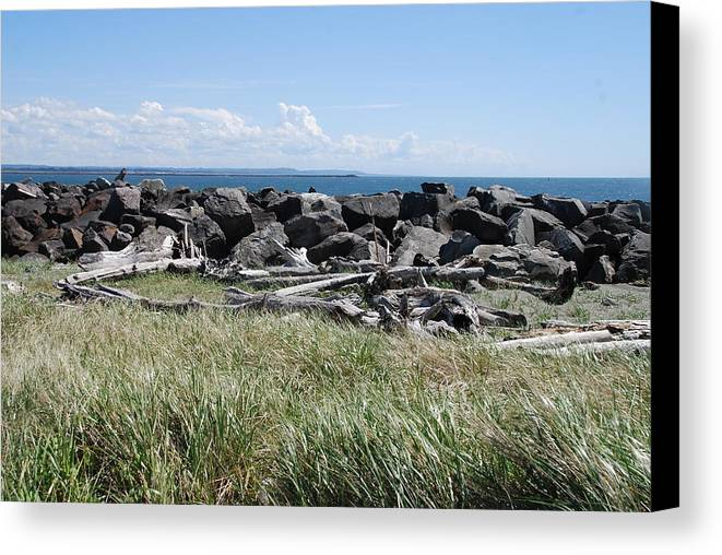 Ocean Canvas Print featuring the photograph The Rugged Coast by Michael Merry
