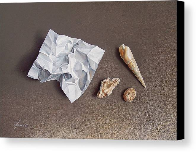 Shells Canvas Print featuring the drawing Three Shells For Collection by Elena Kolotusha