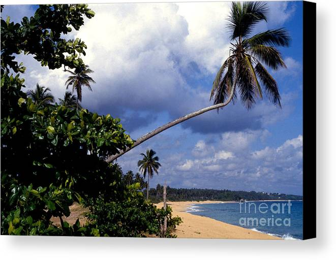 Puerto Rico Canvas Print featuring the photograph Los Tubos Beach by Thomas R Fletcher