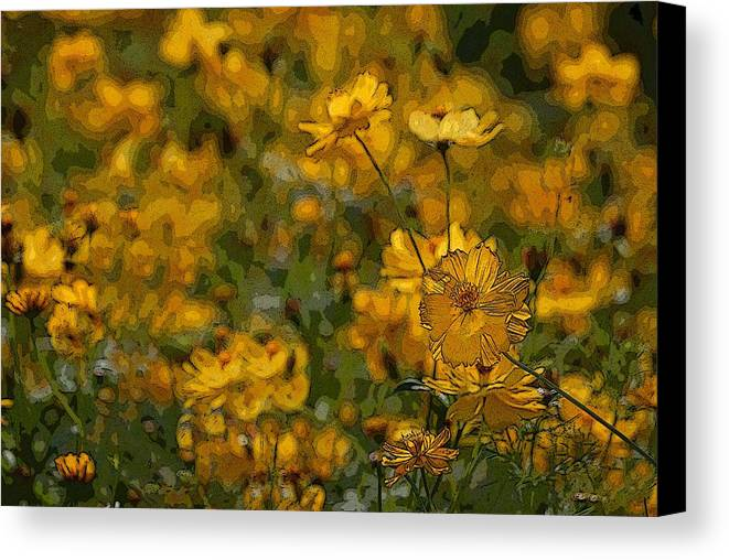 Yellow Canvas Print featuring the photograph Summer Flowers by Ed Zirkle
