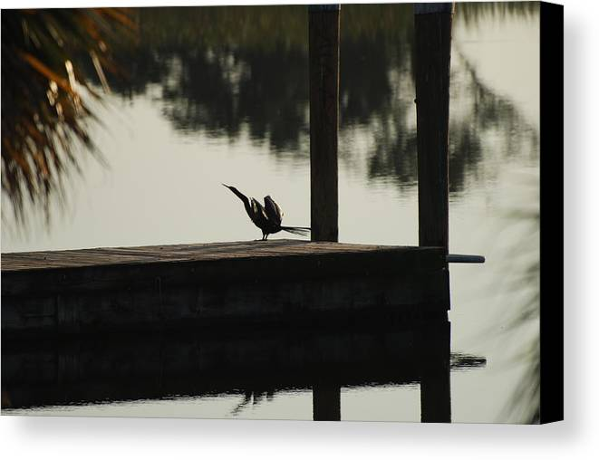 Reflections Canvas Print featuring the photograph Dock Bird by Rob Hans