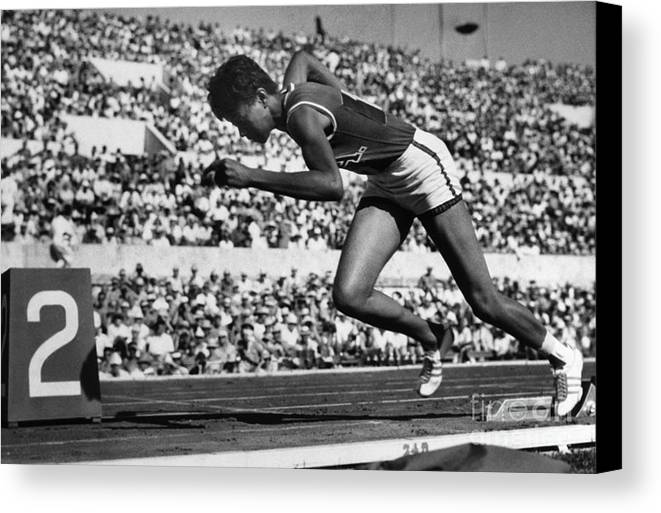 1960 Canvas Print featuring the photograph Wilma Rudolph (1940-1994) by Granger