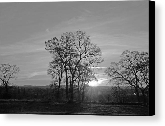 Landscape Canvas Print featuring the photograph A. M. by M Ryan