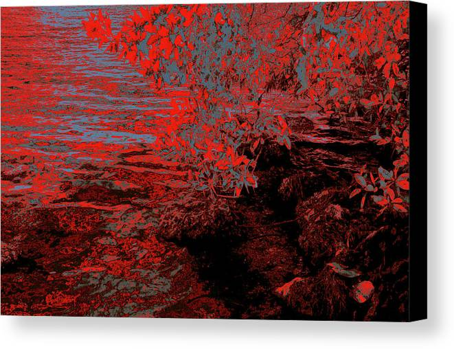 Ponds Canvas Print featuring the photograph A Quiet Place 11 by Gary Bartoloni